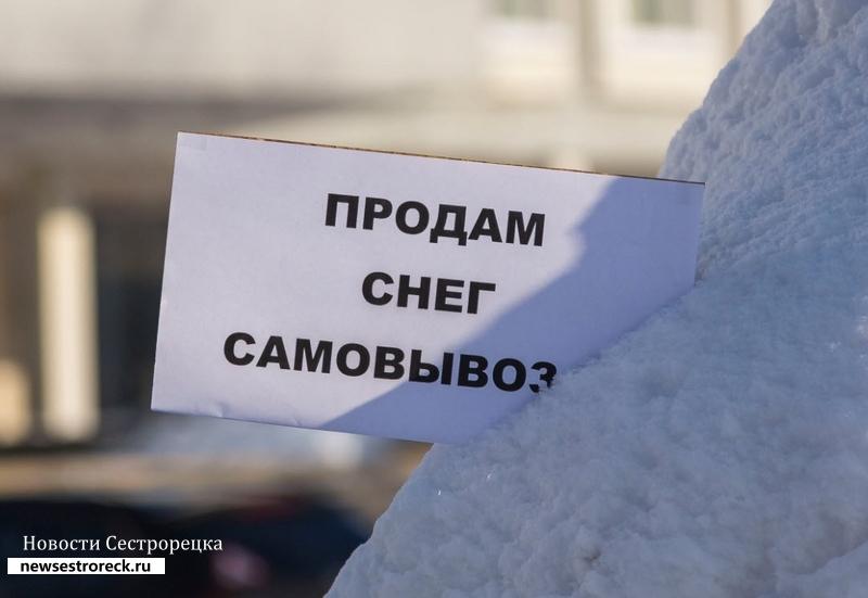 В Сестрорецке продают снег