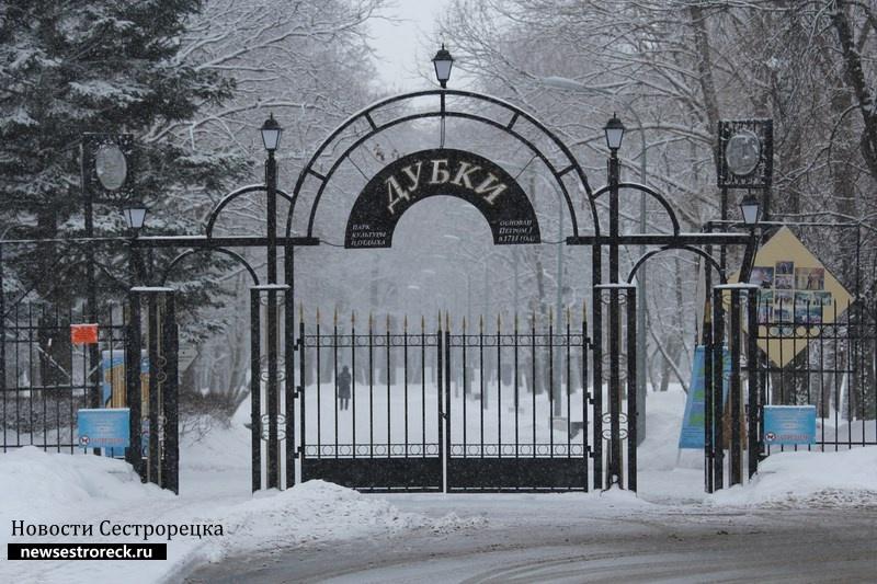 """В Сестрорецке «заминировали» парк """"Дубки"""""""